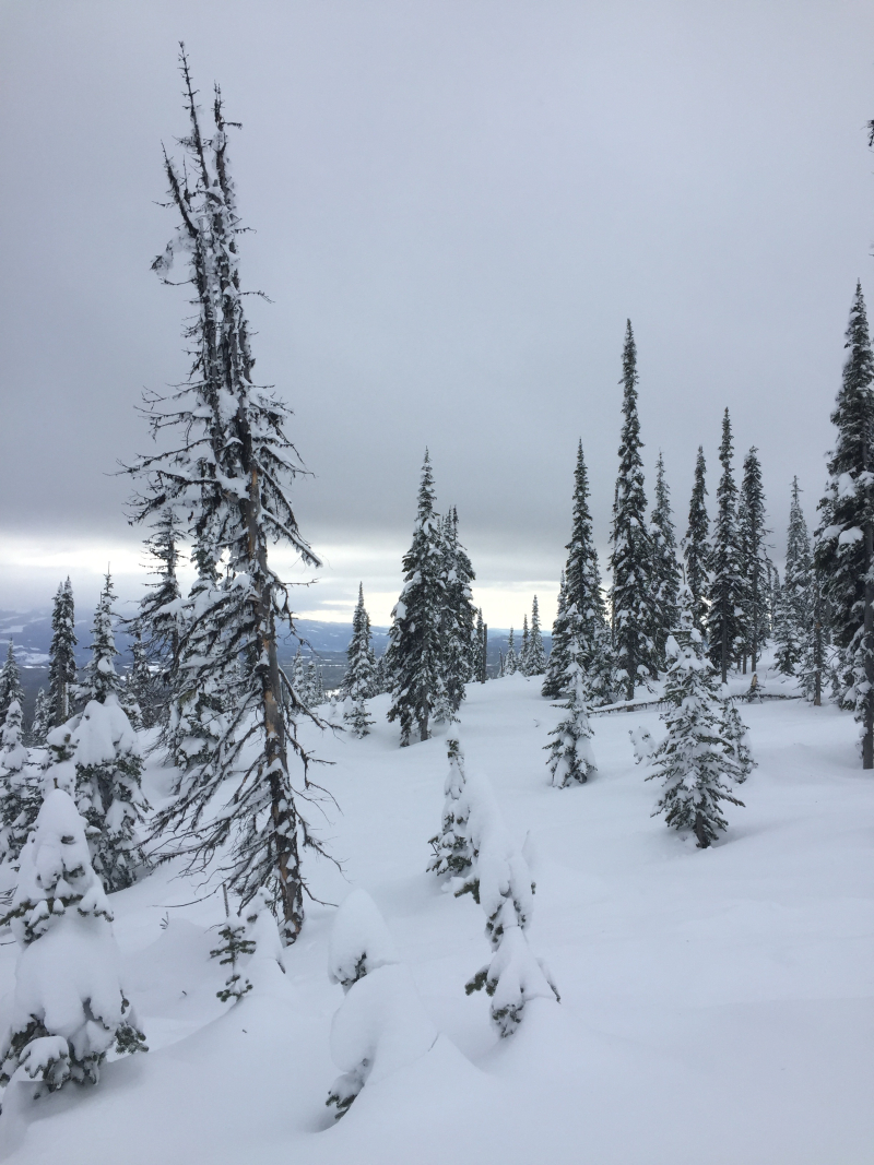 Cloud layer at Big White