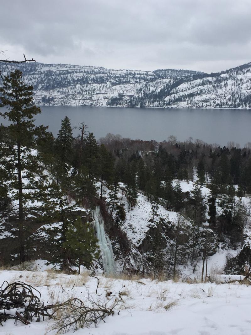 View of Okanagan Lake